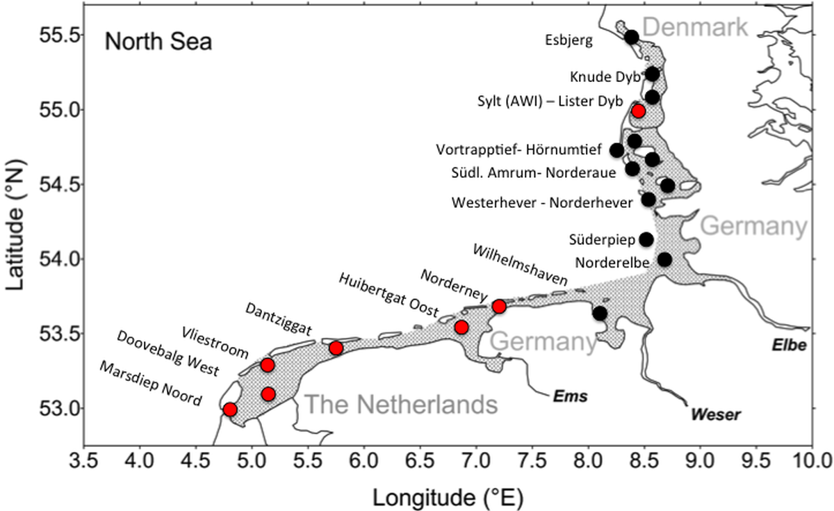Figure 5. Map of the Wadden Sea with the stations used in the QSR.