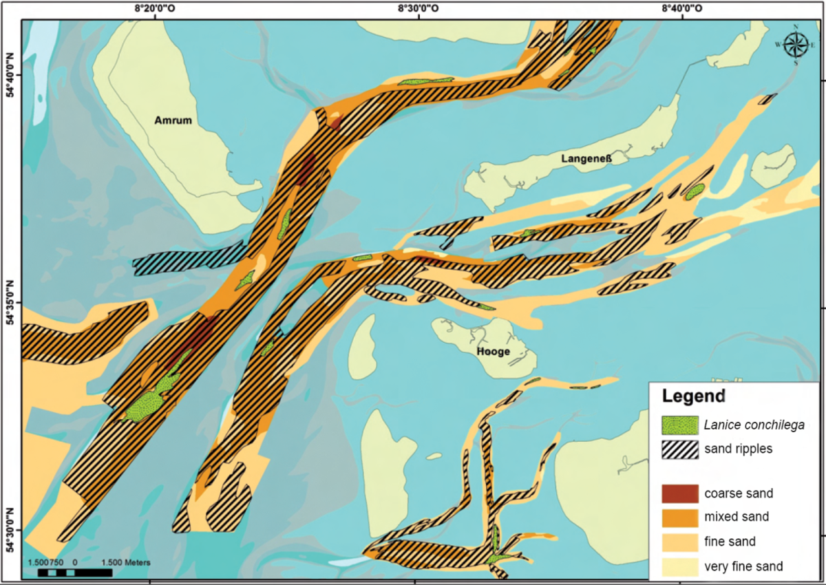 Results from hydroacoustic surveys in the subtidal of the northern German Wadden Sea