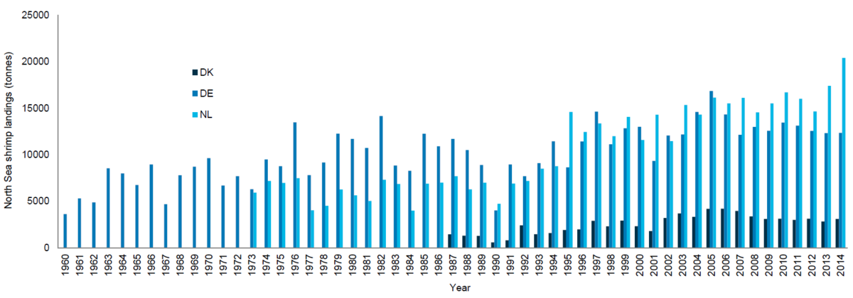 Figure 2. North Sea brown shrimp landings (t) for Germany, Netherlands, Denmark 1960-2014 (ICES, 2015).
