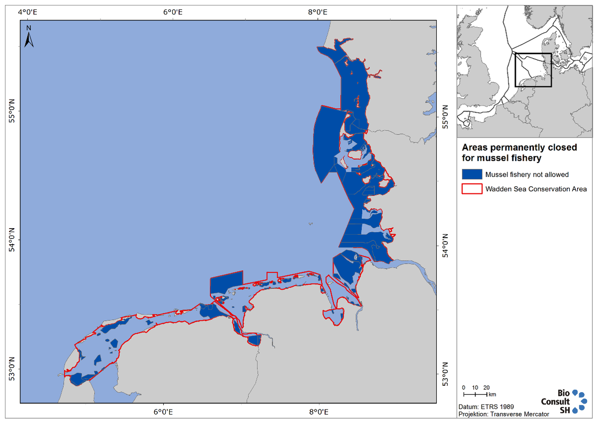 Figure 9. Wadden Sea areas currently closed to mussel fishery. This map includes future closed areas in Schleswig-Holstein when the updated management plan comes into effect.