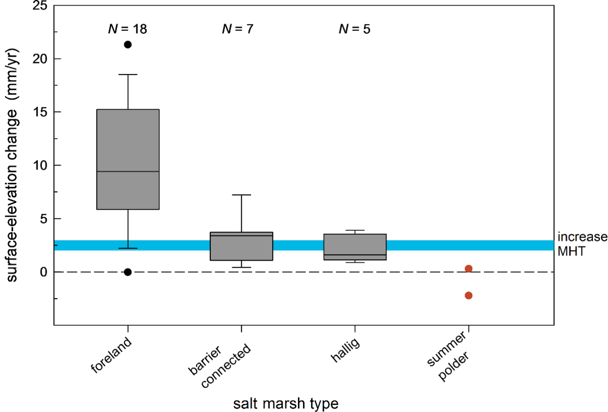 Vertical accretion rates in Wadden Sea salt marshes and summer polders