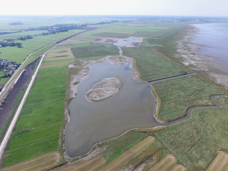 Example of re-designing and rewetting an artificial salt marsh after clay extraction by removing the top soil in the Neuwapeler Außengroden