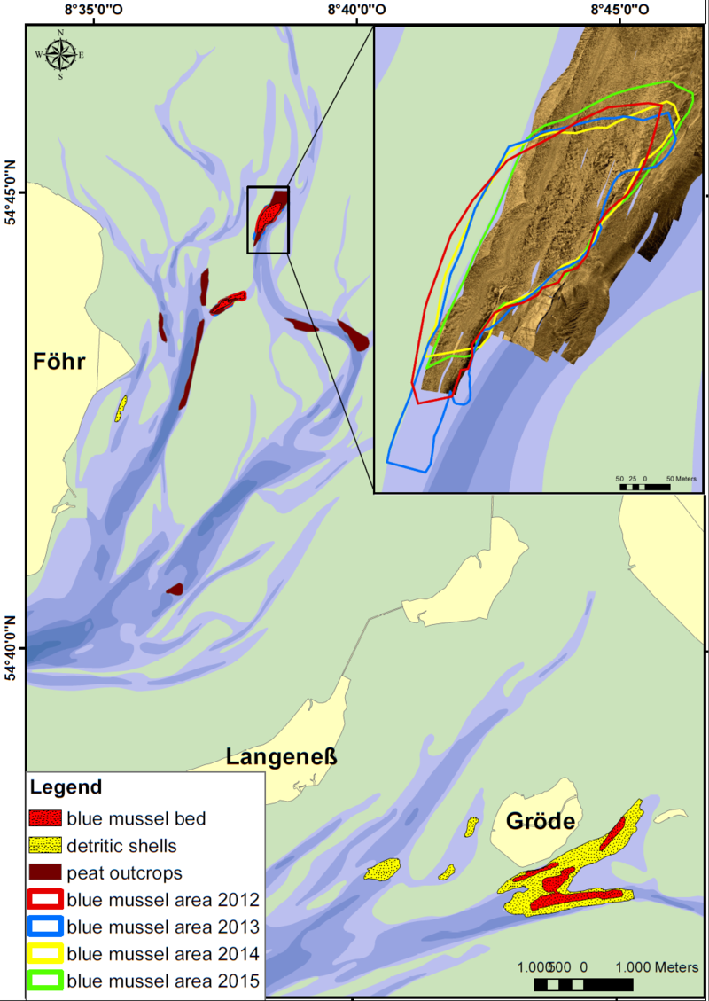 Mapped subtidal habitats in the North Frisian tidal basins of Norder- and Süderaue