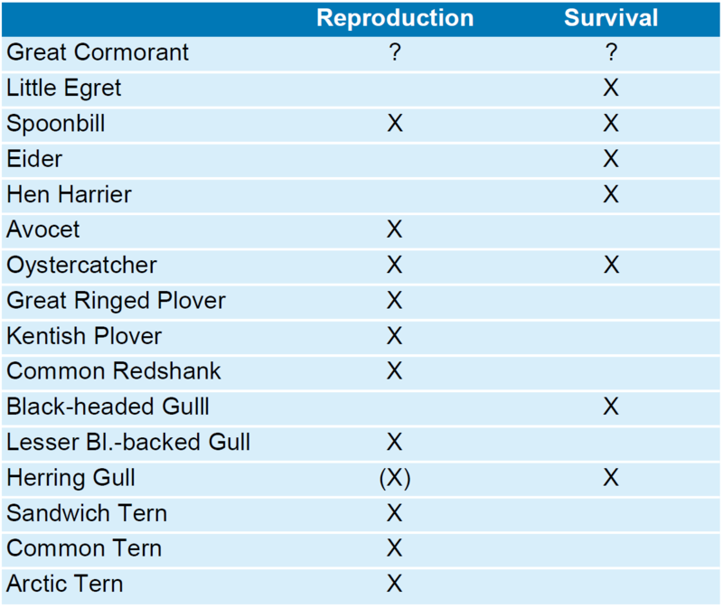 Table 5. Review of demographic processes causing Wadden Sea breeding bird populations to change